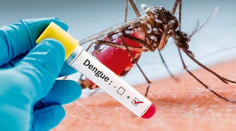 Se disparan casos de dengue en Honduras